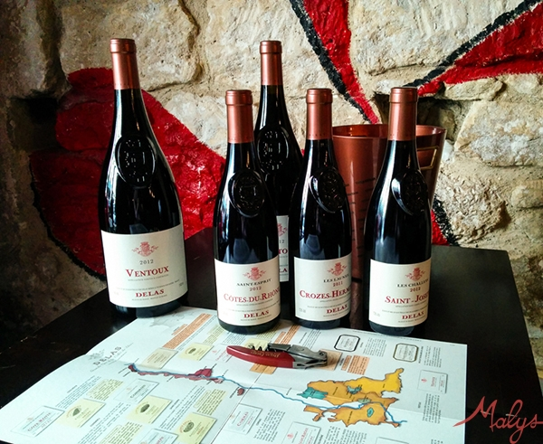 degustation-malys-vins-château-delas